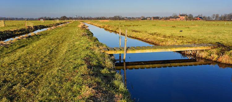 acque per canale agricoltura